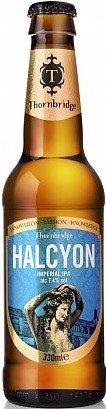 Halcyon Pivo 0,33l 7,4%