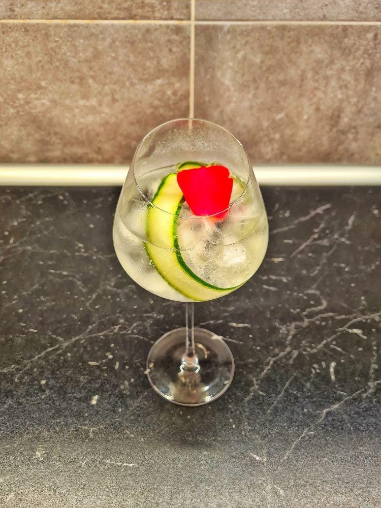 Gin tonik drinky
